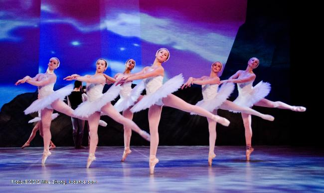 corps - Swan Lake by the American Youth Ballet (of American Dance Center in Overland Park, KS) May 12, 2012 - photo Mike Strong